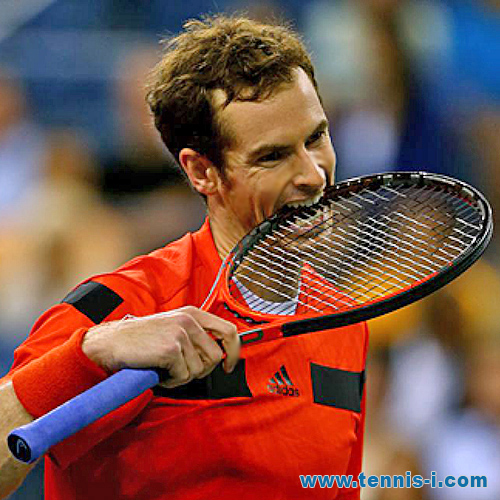 tennis Andy Murray