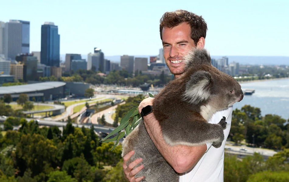 Andy Murray Australia 2015